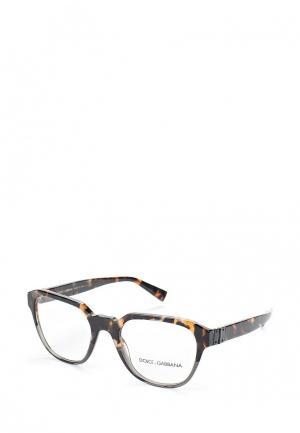 Оправа Dolce&Gabbana DG3277 3145. Цвет: коричневый