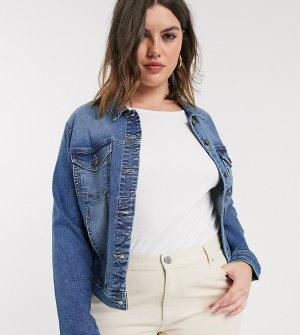Синяя джинсовая куртка -Синий Only Curve