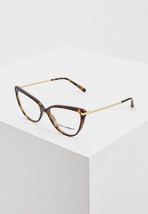 Оправа Dolce&Gabbana DG3295 502. Цвет: коричневый