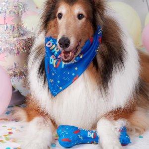2шт Бандана для домашних животных & игрушка в фоме кости SHEIN. Цвет: многоцветный
